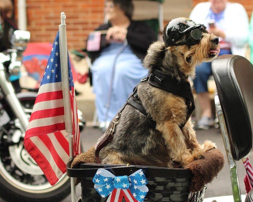 Grabill Pet Parade
